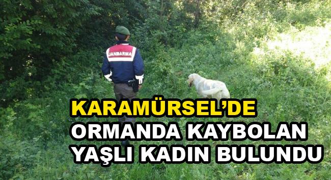 Karamürsel'de Ormanda Kaybolan Yaşlı Kadın Bulundu