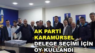 AK Parti Karamürsel Delege Seçimi İçin Oy Kullandı