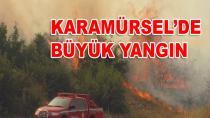 Karamürsel'de Makilik Alanda Yangın