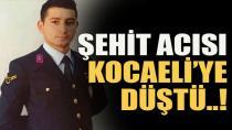 Şehit Acısı Kocaeli'ye Düştü !