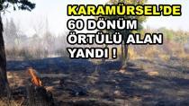 Karamürsel'de 60 Dönüm Alan Yandı