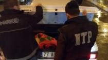 Karamürsel'de Narkotik Denetimi Yapıldı