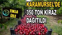 Karamürsel'de 350 Ton Kiraz Dağıtıldı